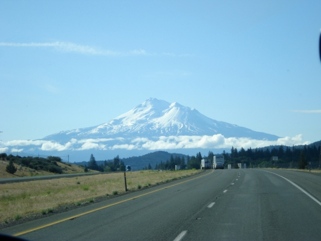 my-shasta-road-view